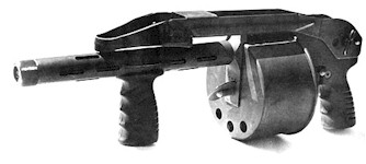 Photo of Striker 12 gauge shotgun